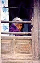 _window-nepal.jpg