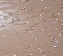 shells-ashdod-israel-2004.jpg